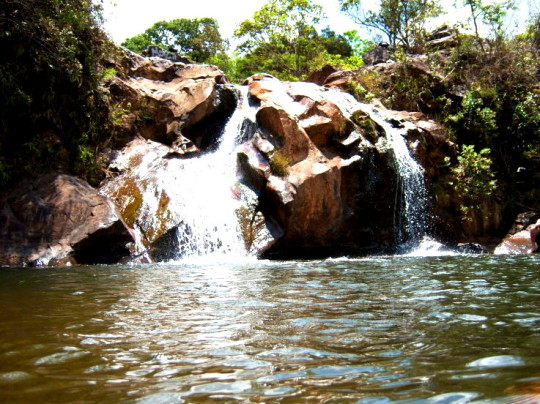 macacos-cachoeira