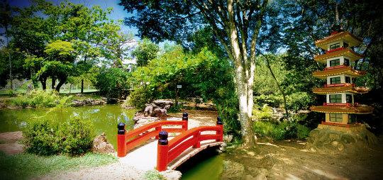 Jardim-Japonês