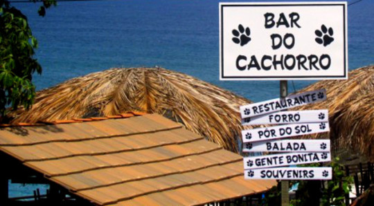 bar-do-cachorro