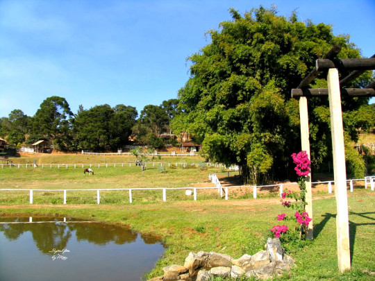 quinta-do-cedro-sao-lourenco