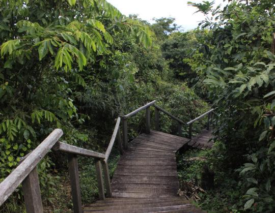 trilha-ecologica-do-restaurante-penhasco