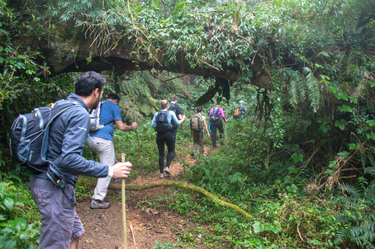 trekkings-sao-francisco-xavier