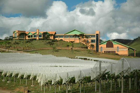 vinicola-villa-francione-sao-joaquim