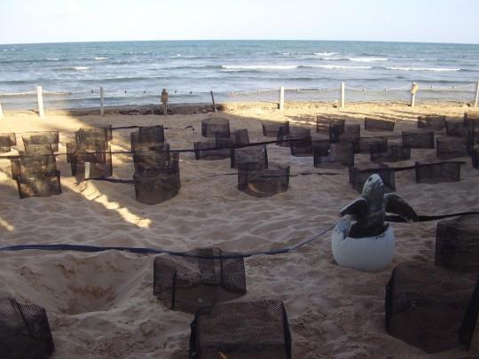 Foto: www.mochileiros.com