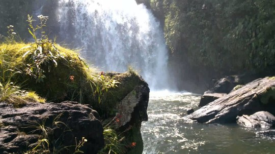 cachoeira-bracuhy-angra-dos-reis