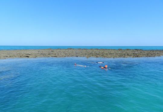o-que-fazer-em-japaratinga-mergulho